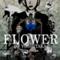 flower47ver